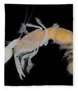 Tidepool Ghost Shrimp Fleece Blanket