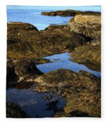 Tidepool In Maine Fleece Blanket