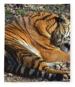 Tiger Behavior Fleece Blanket
