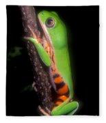 Tiger Leg Monkey Frog Fleece Blanket