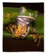 Tiger-stripe Monkey Frog Fleece Blanket