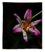 Toad Lilly 2 Fleece Blanket
