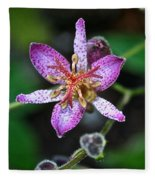 Toad Lily Fleece Blanket