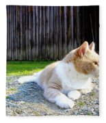Toby Old Mill Cat Fleece Blanket