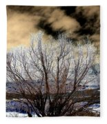Touch Of Frost Fleece Blanket