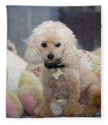 Toy Poodle Fleece Blanket