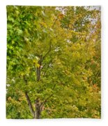 Transition Of Autumn Color Fleece Blanket