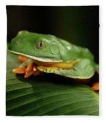 Tree Frog 1 Fleece Blanket