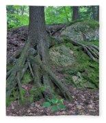 Tree Growing Over A Rock Fleece Blanket