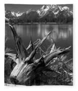 Tree Stump On The Shore Of Lewis Lake At Yellowstone Fleece Blanket