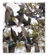 Tree Swallow Frenzy Fleece Blanket