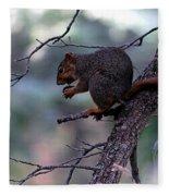 Tree Top Nut Fleece Blanket