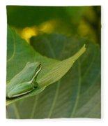 Treefrog Resting Fleece Blanket