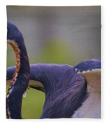 Tricolored Heron About To Fly Fleece Blanket