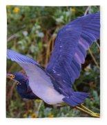 Tricolored Heron In Flight Fleece Blanket