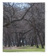 Trinity Park Ft Worth Tx Fleece Blanket
