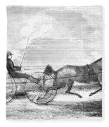 Trotting Horse, 1853 Fleece Blanket