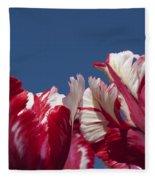 Tulip Estella Reinfeld Fleece Blanket