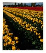 Tulip Fields Forever Fleece Blanket
