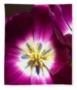 Tulip Overture Fleece Blanket