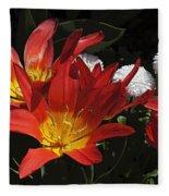 Tulips And Daisies Fleece Blanket