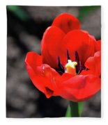 Tulips Blooming Fleece Blanket