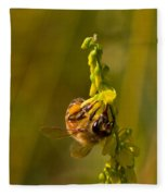 Tupelo Honey Fleece Blanket