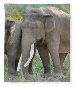 Twin Elephants Fleece Blanket