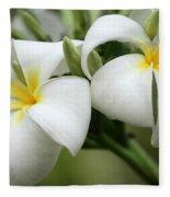 Twin Plumeria Flowers Fleece Blanket