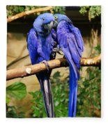 Two Blue Parrots Fleece Blanket