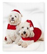Two Cute Dogs In Santa Outfits Fleece Blanket