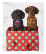 Two Dachshund Puppies Inside A Polka Fleece Blanket
