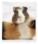 Two Guinea Pigs Fleece Blanket