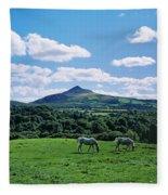 Two Horses Grazing In A Field Fleece Blanket