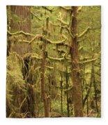 Waltzing In The Rainforest Fleece Blanket