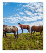 Two Quarters And An Appaloosa Fleece Blanket