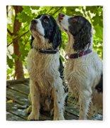 Two Wet Puppies Fleece Blanket