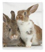 Two Young Rabbits Fleece Blanket