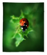 Ultra Electro Magnetic Single Ladybug Fleece Blanket