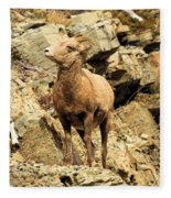 Up Where? Fleece Blanket