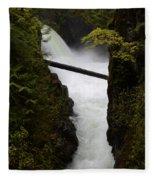 Upper Qualicum Falls 2 Fleece Blanket