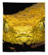 Usambara Eyelash Bush Viper Fleece Blanket