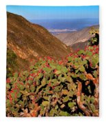 Valle Del Desierto Fleece Blanket