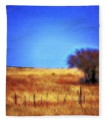 Valley San Carlos Arizona Fleece Blanket