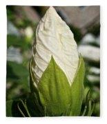 Vanilla Hibiscus Fleece Blanket