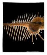 Venus Comb Murex Shell Fleece Blanket