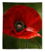 Vibrant Red Oriental Poppy Wildflower Fleece Blanket