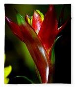 Vibrantly Rich In Red Fleece Blanket