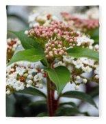 Viburnum Tinus Spring Bouquet Fleece Blanket