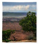 View Of Canyonland Fleece Blanket